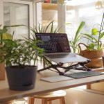 Remote Work Policies Still in Development